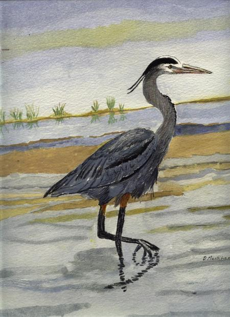 Great Blue Heron.JPG